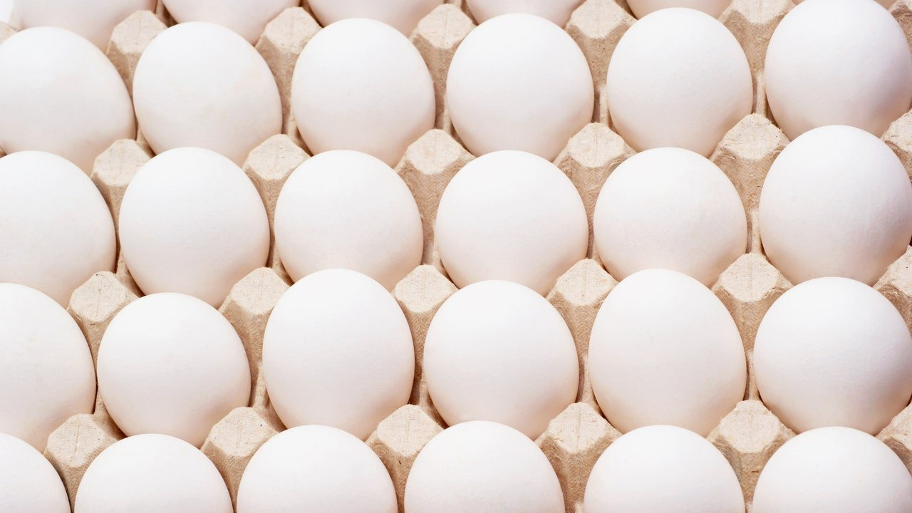 How to Tell if an Egg is Bad (Plus Tips to Keep Eggs Fresh)