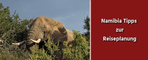 Namibia Tipps zur Reisevorbereitung   Erkunde die Welt