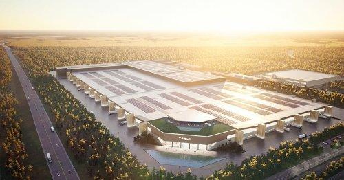 Elon Musk: Teslas Gigafest in Grünheide – 300 Hektar neue Bäume als Ersatz für die gerodeten Kieferwälder