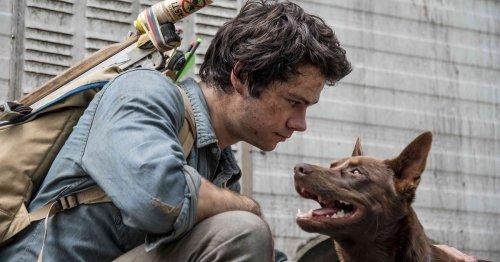 TV-Tipp Love and Monsters: Lohnt sich der neue Netflix-Film?