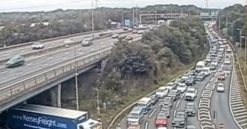 Petrol station queues cause major A12 and M25 congestion in Essex