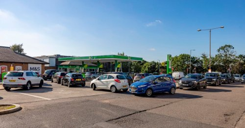Live: Essex petrol stations run out of fuel with long queues building