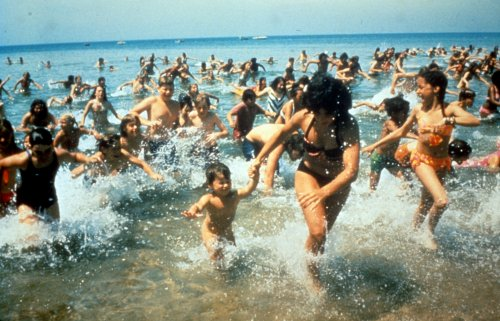 Best Beach-Themed Movies To Get You Into The Summer Spirit