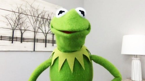 Kermit the Frog on Working With Your Ex After Miss Piggy Breakup