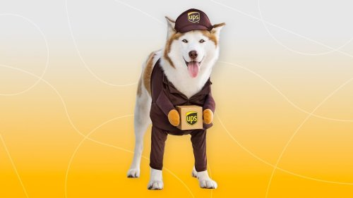 The Cutest, Funniest Halloween Costumes for Dogs