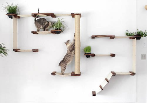 Elevated Cat Furniture From CatastrophiCreations