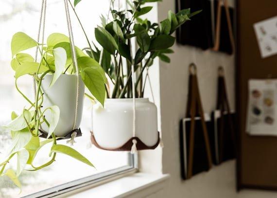 20% off hanging plant hammock
