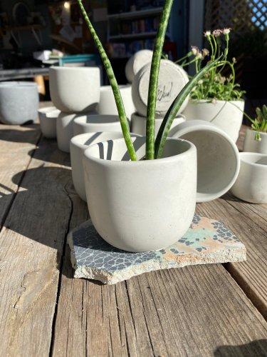 Simple and stylish concrete pot