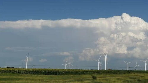 Large Wind Farms Cause Different Effects For Local And Regional Climates