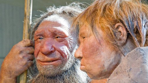 Study: Neanderthal genes could increase risk for severe COVID-19