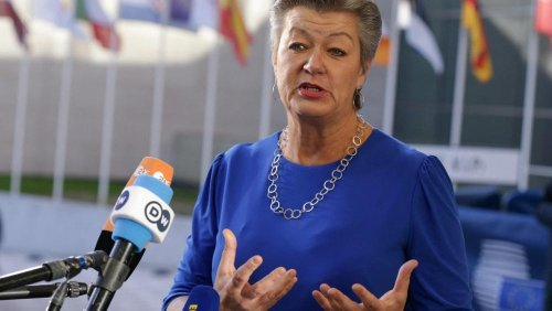 EU executive summons Polish, Lithuanian, Latvian ambassadors over Belarus border crisis