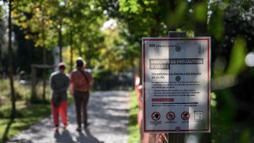 Dioxin in Lausanne: Große Teile des Stadtgebiets vergiftet