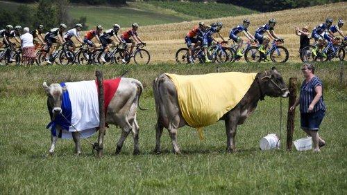 تاریخ جدید رقابتهای دوچرخه سواری تور دو فرانس ۲۰۲۰