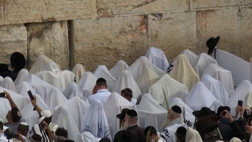 Nicht nur in Jerusalem: Das jüdische Laubhüttenfest Sukkot