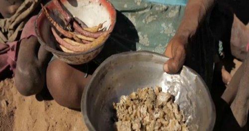 Madagascar : la sécheresse est alarmante | Africanews