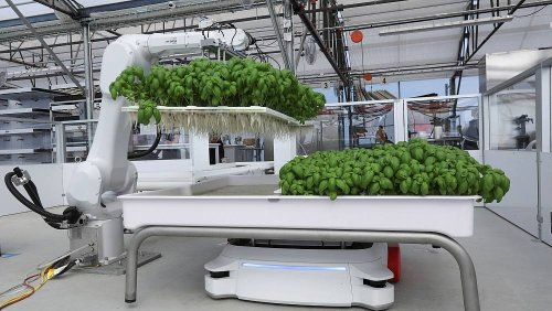 Could these AI robots replace farmers and make agriculture more sustainable?
