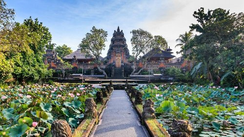 Ubud: What to do and where to stay in Bali's jungle district