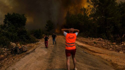 Turkey fires: Tourists and locals evacuated from holiday resorts as wildfires spread
