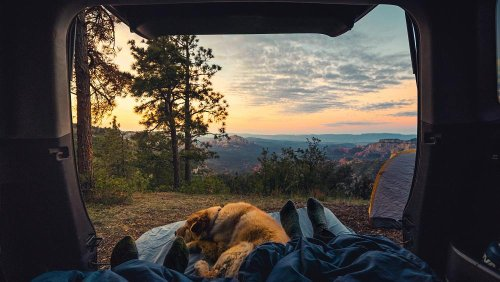 How to go on an eco-friendly camping trip this summer
