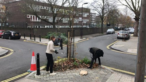 What is guerrilla gardening and how does it help the climate?