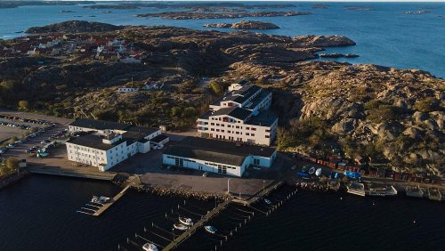 Seaweed to cow feed: Why is Sweden building the world's largest algae factory?