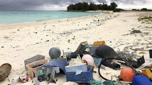 8 giugno: salvare gli oceani per salvare la Terra