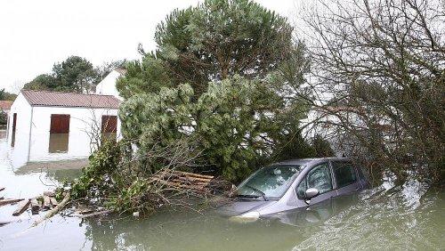 Francia, 10 anni dopo la tempesta killer: esodo climatico dal resort
