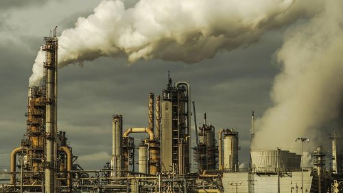 The Big Con: The businesses accused of faking net-zero climate targets