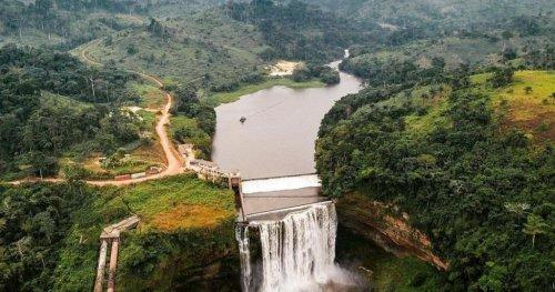 Congo : des excursions écoresponsables au cœur de la faune | Africanews