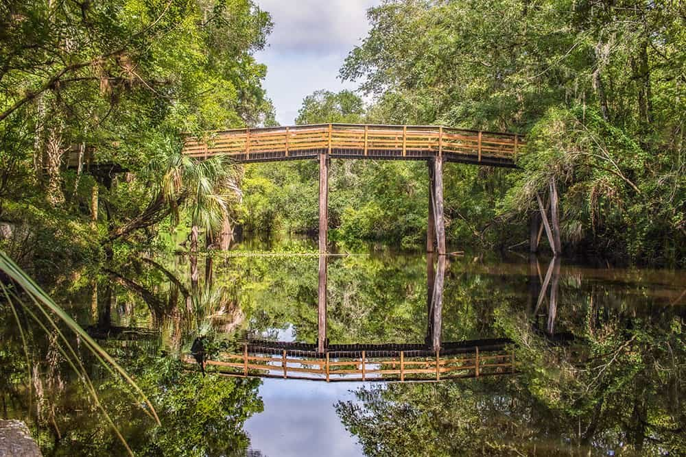 Hiking in Florida - Where To Find The Best Hikes in Florida
