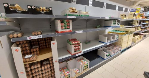 I took a trip to my local supermarkets to check on 'food shortages'