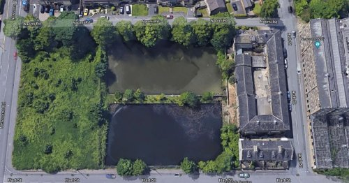 Thirty year battle to save Newsome Mills ponds ends in defeat