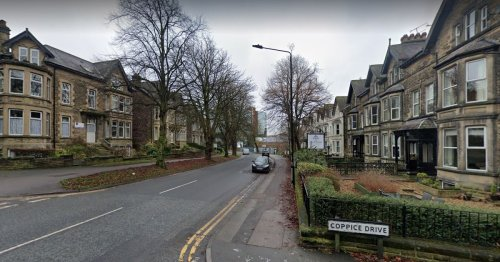 Manhunt after teenage girl sexually assaulted in Harrogate
