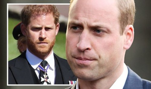 'Sick of it all!' William fed up with Harry's media antics as major showdown looms
