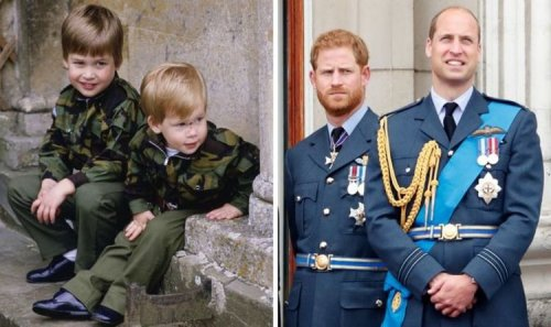 'Harry and William's 'intriguing dissimilarity' as children explained: 'He was crying'