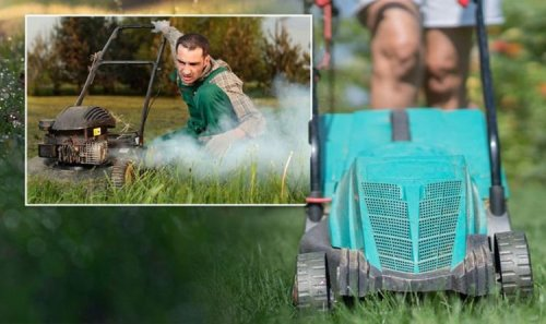 The 'dangerous' reason you should avoid mowing your lawn in the morning