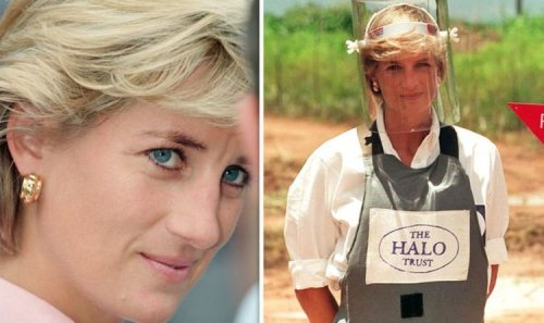 New details on Diana death: What are latest revelations - real reason she was in Paris