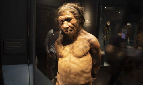 Scientists find evidence for mysterious 'ghost population' that rewrites human history