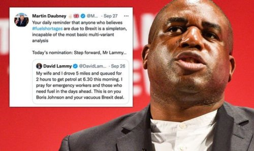 It's not Brexit! David Lammy labelled a 'simpleton' for outrageous fuel shortage claim