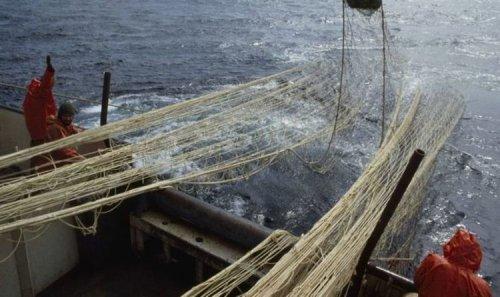 EU fishing chiefs launch massive crackdown on Irish fleet in wake of quotas scandal
