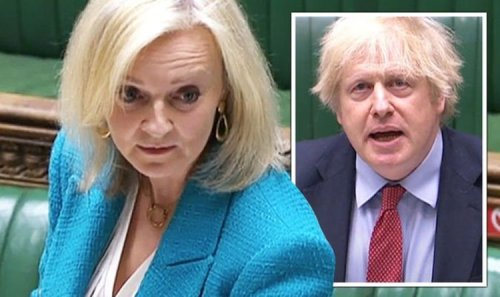 Liz Truss for PM! Brexit superwoman on leadership march as Boris on brink - new poll