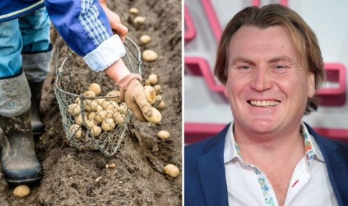David Domoney shares tips on best veg to grow in April - including potatoes