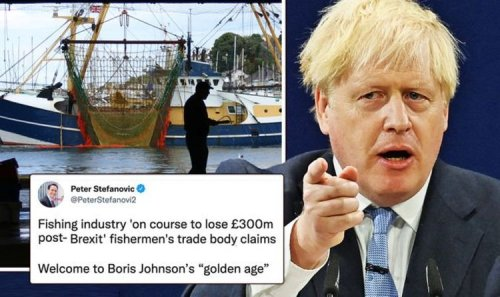 Remainers GLOAT as fishing industry could lose £300m: 'Welcome to Boris' golden age'