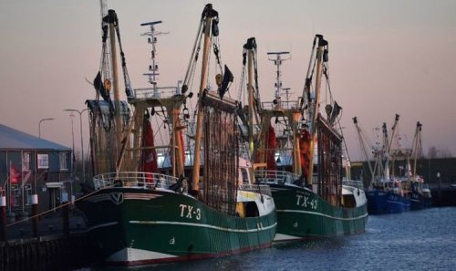 EU waging fishing war as fly-shooting could put UK industry on brink of collapse