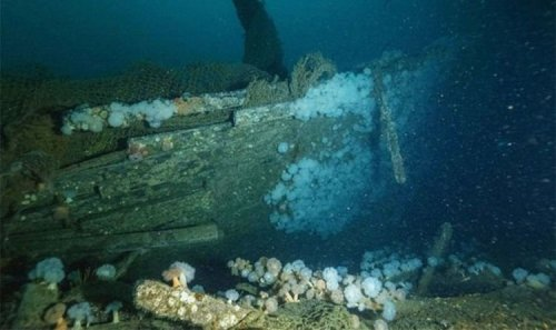 Archaeology breakthrough as 'incredible' wreck of WW2 Nazi-hunting ship found