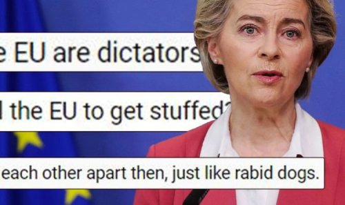 'Get stuffed!' Britons furious as EU drags 23 nations to court for not obeying rules