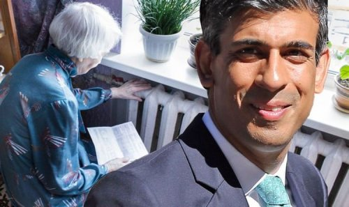 Energy bills set to be slashed: Rishi Sunak to use Brexit powers to cut cost for millions