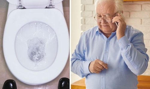 Fatty liver disease symptoms: Doctors share eight warning signs it is 'critical'