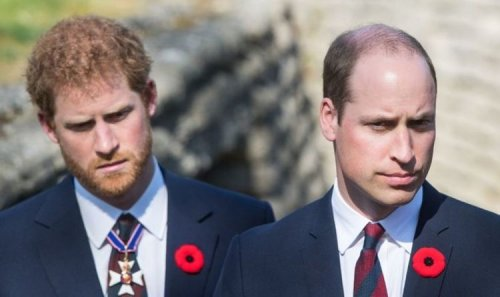 Prince Harry and Prince William are 'playing out the dynamic of their parents' says expert