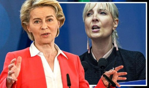'We must STOP it!' New Nordic eurosceptic alliance forged as VDL launches EU Conference